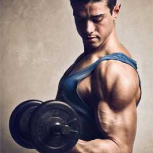 Den beste biceps trening for menn
